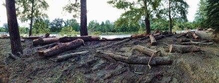 Ostaci poplave još su vidljivi na Prince's islandu