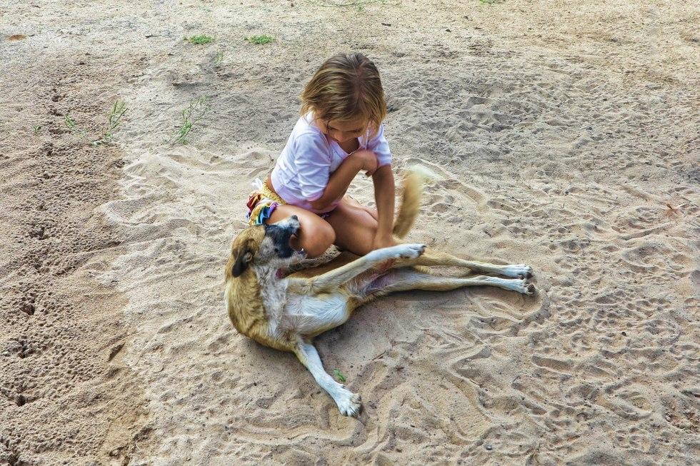 Frankova mala u igri s psom